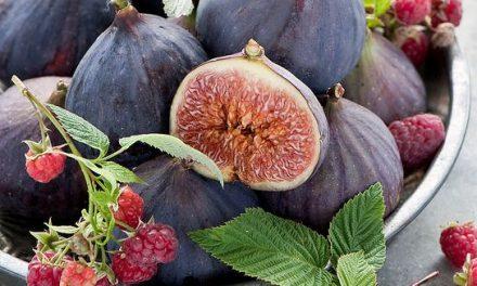 COOKING FOR PLEASURE – Осенние фрукты в красном вине
