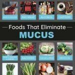 12 Foods That Cause Excessive Mucus In The Body (and 14 Foods That Eliminate It!…