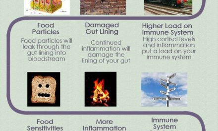 How increased intestinal permeability and leaky gut syndrome lead to autoimmune …