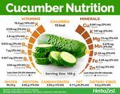 Cucumber Nutrition